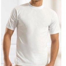 Medvilniniai marškinėliai trumpomis rankovėmis (nuo 2XL iki 5XL) 0116
